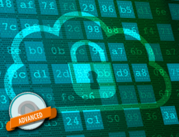 A professional approach to data security in the cloud